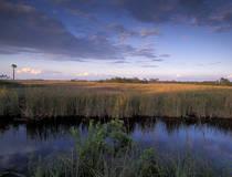 Everglades National Park, Florida.  © Christian Heeb